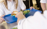 Food allergies: From kitchen to classroom